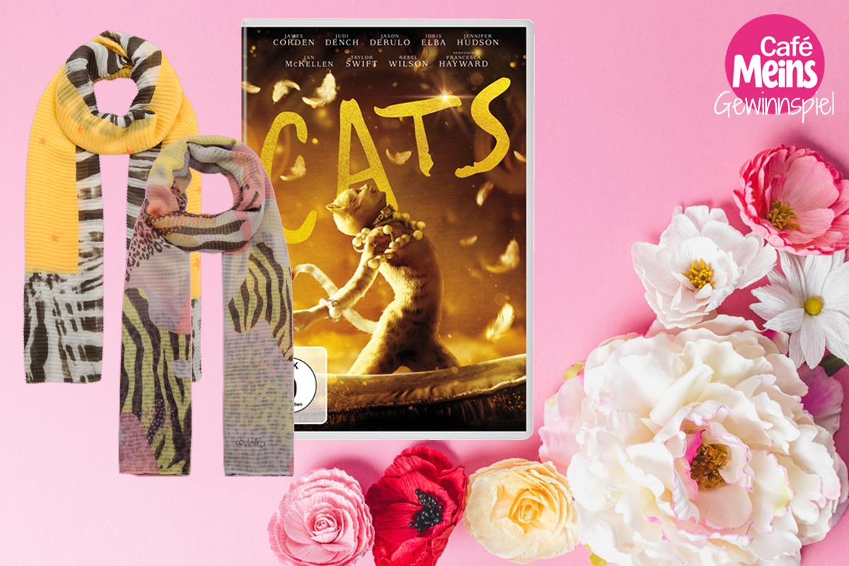 CATS-Gewinnspiel